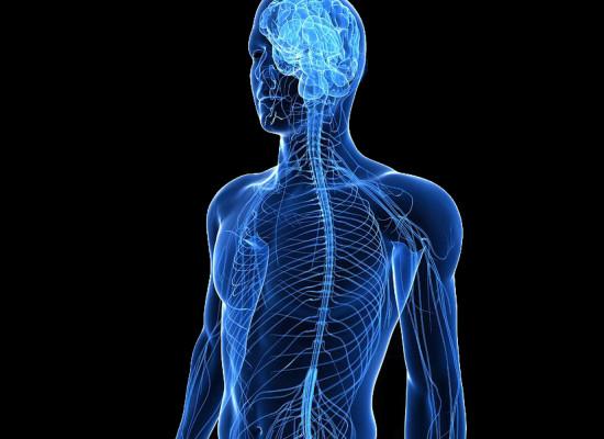 Состояние нервной системы студентов