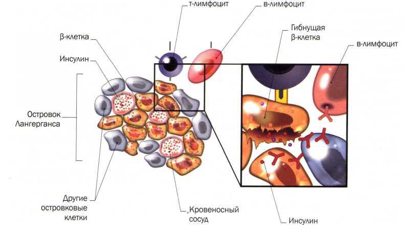 запах ацетона изо рта при отравлении