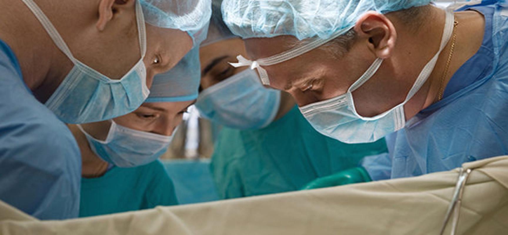 Трансплантация Почки фото