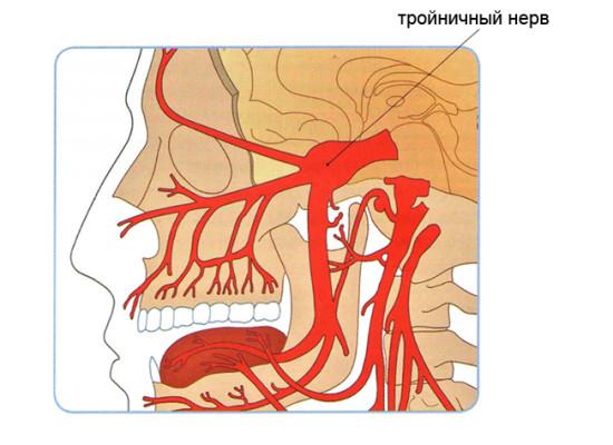Поражение черепных нервов