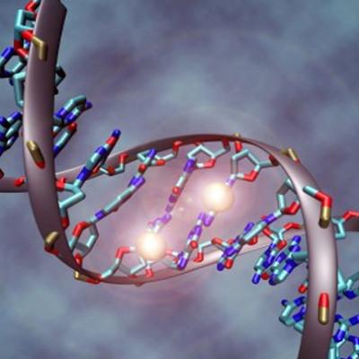 Как наши гены могут влиять на нас