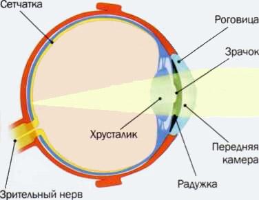 Световая офтальмия (фотоофтальмия)
