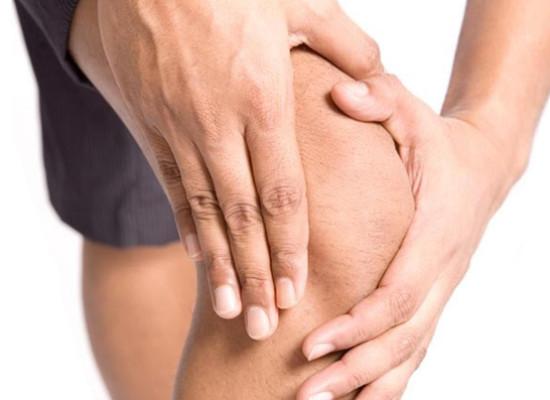 Структурно-функциональные особенности коленного сустава