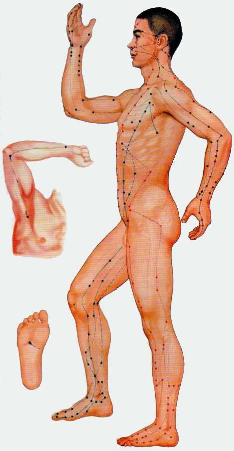 Акупунтурные точки на теле человека